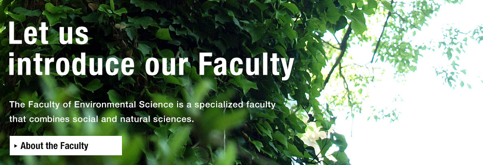 About the Faculty